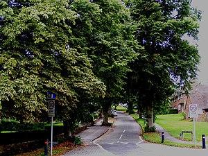 English: Chiltern Close, Berkhamsted A bucolic...