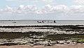 Claddagh Beach and Galway Bay, Galway (506183) (26143889260).jpg