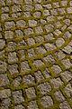 Cobblestones & moss.jpg