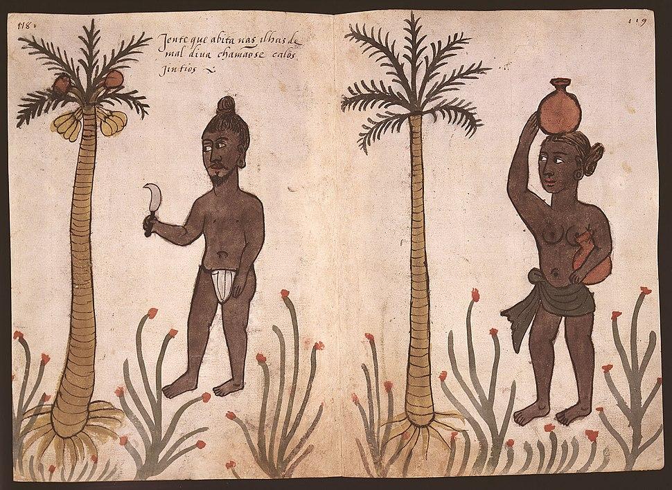 Codice Casanatense Maldivans