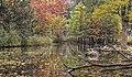 Colors of autumn (10314686644).jpg