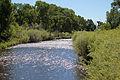 Conejos River.JPG