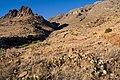 Copper Kettle Canyon - Flickr - aspidoscelis (2).jpg