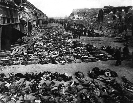 pictures from the holocaust - HD3000×2341