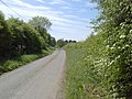 Country Road, Co Meath - geograph.org.uk - 1881616.jpg