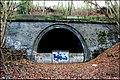 Criggleston tunnel West portal - geograph.org.uk - 1066529.jpg