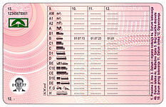 Croatian driving licence back