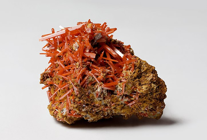 Crocoite from the Dundas extended mine, Dundas, Tasmania, Australia.jpg