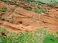 Cross-bedded Permian Sandstone - geograph.org.uk - 71404.jpg