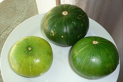 el verde ms clarito fue cosechado antes o tambin hay variedades recientes de ese color descripto en el verde muy oscuro y algo lobado y opaco