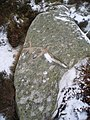 Cup marked stone - geograph.org.uk - 319072.jpg