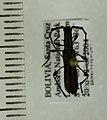 Cycnoderus tenuatus Audinet-Serville, 1834 (5410792726).jpg