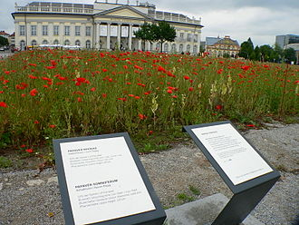 Documenta 12 - D12 poppy field