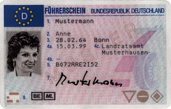 Current EU driving licence, German version - front1. Family name2. Given name(s)3. Date and place of birth4a. Issuing date4b. Expiry date (non-existent for German driving licenses)4c. Issuing authority5. Licence number7. Signature of bearer9. Categories