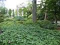 De Plantage (84).jpg