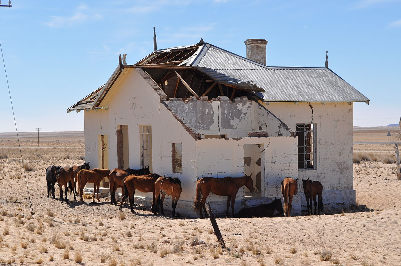 Ghost towns and wild horses of the African Namib Desert
