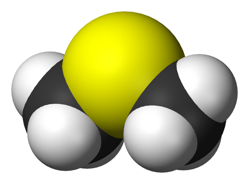Spacefill model of dimethyl sulfide