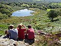 Dinas Lake - geograph.org.uk - 1731903.jpg