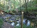 Dipton Burn Crossing - geograph.org.uk - 950944.jpg