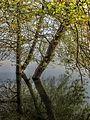 Dojran Lake 135.jpg
