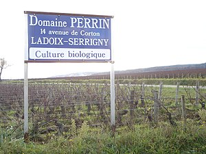 Ladoix wine - A vineyard in Ladoix-Serrigny
