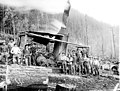 Donkey engine and loging crew, Snohomish County, ca 1911 (PICKETT 43).jpeg