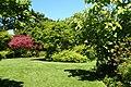 Dunedin Botanic Garden kz15.jpg