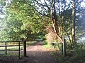 Early morning at Scadbury Park Nature Reserve - geograph.org.uk - 2111023.jpg