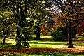 Edinburgh Botanic Gardens - geograph.org.uk - 618301.jpg