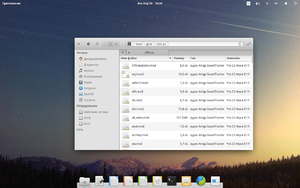 Elementary OS Freya FileManager 2