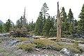 Emerald Bay State Park - panoramio (16).jpg