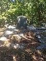 Emily Cumming Harris grave.jpg