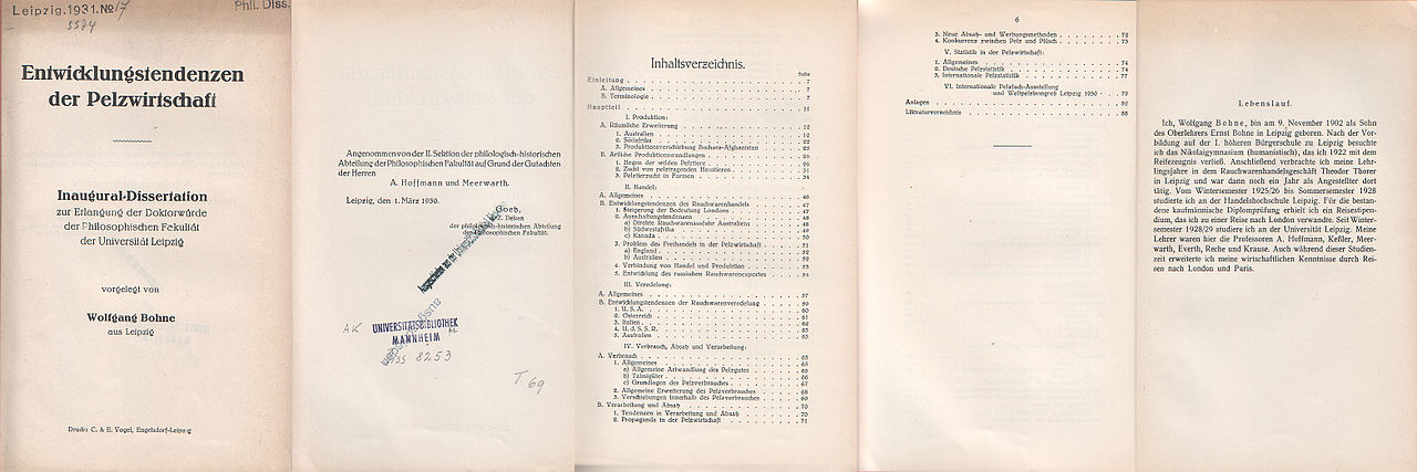 Dissertation wiki deutsch