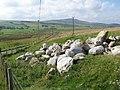 Erratic boulders - geograph.org.uk - 964839.jpg