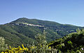 Ersa-Botticella.jpg