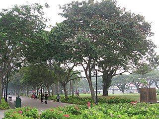 Esplanade Park historic park originally built in 1943 located in the Esplanade within the Downtown Core of the Central Area in Singapores central business district.