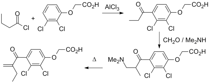 fatty acid sysnthesis