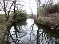 Evening Reflection - River Wid - Easter 2012 - panoramio.jpg