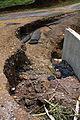 FEMA - 44692 - Storm damage in Puerto Rico.jpg