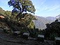 Falam, Myanmar (Burma) - panoramio (22).jpg