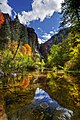 Fall in Sedona - panoramio.jpg