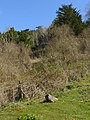 Fallen parish boundary stone, Stockbridge Down - geograph.org.uk - 1243433.jpg