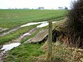 Farm track near Gunnersvale Farm - geograph.org.uk - 344739.jpg