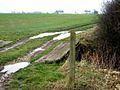 Farm track near Gunnersvale Farm - geograph.org.uk - 344739.jpg