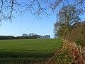 Farmland, Boxford - geograph.org.uk - 1228451.jpg