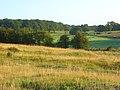 Farmland, Curridge - geograph.org.uk - 928027.jpg