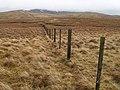 Fence, Falla Moss - geograph.org.uk - 663765.jpg