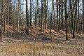 Festung Rosenberg - Ehemalige Erdwerke - 2 - 2014-03.jpg