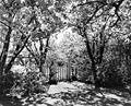 Field trip to yard of orcharist Paul Wallace, entrance garden gate (7160064859).jpg