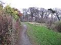 Fife Coastal Path, Hopeward Wood - geograph.org.uk - 1077833.jpg
